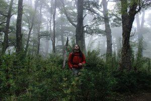 santuario-el-cañi-mawida-volcano-tour-adventures-pucon1