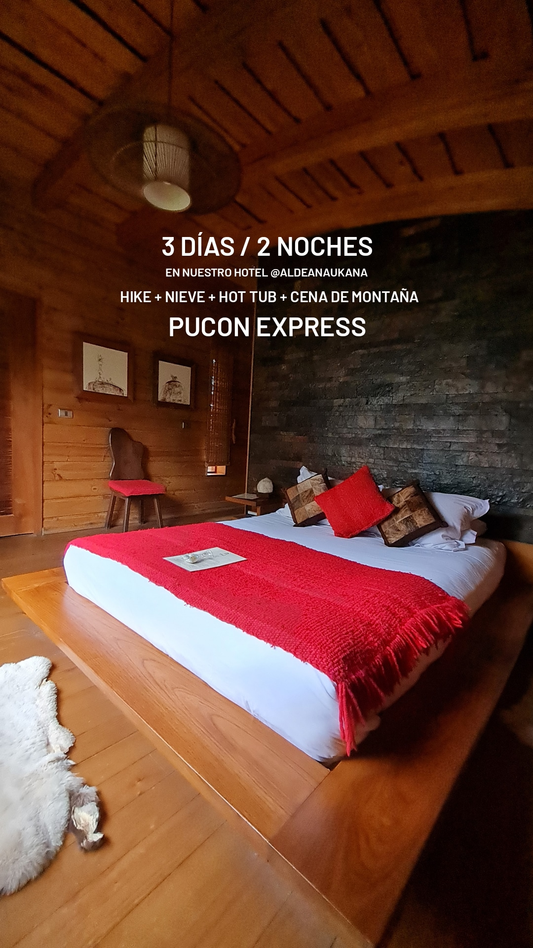 Tour Pucón Express
